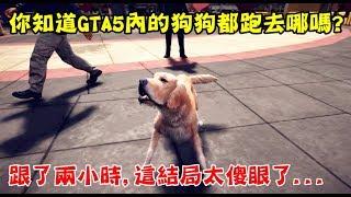 【GTA5】您知道GTA5內的狗狗都去哪裡嗎? 跟著牠2小時這結局很傻眼.. thumbnail