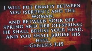 Nephilim  TRUE STORY of Satan, Fallen Angels, Giants, Aliens, Hybrids, Elongated Skulls   Nephilim