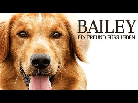 bailey der film