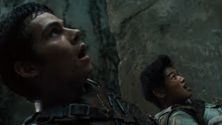 Thomas and Minho survive The Maze [The Maze Runner]