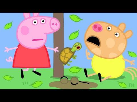 小猪佩奇 第三季 全集合集 | 佩德罗咳嗽了 | 粉红猪小妹|Peppa Pig | 动画
