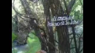 Arroyo de la Sanación.wmv