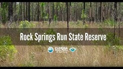 Firsthand Florida Fun: Rock Springs Run State Reserve