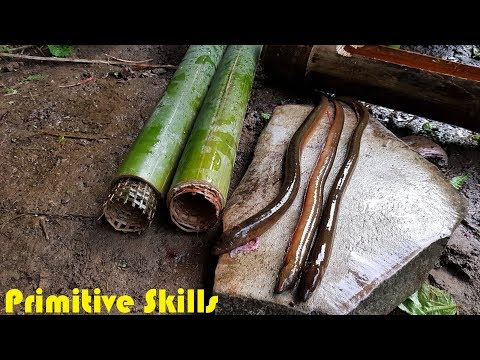 Primitive Technology: The Eels Trap with Bamboo Tube
