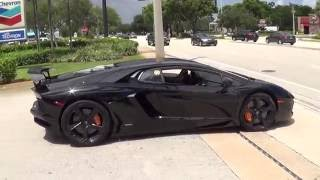 Black ANGRY BULL in Action Lamborghini Aventador Revving Acceleration