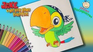 Фото Попугай Скалли Раскраска для Детей  Раскраски Джейк и пираты Нетландии