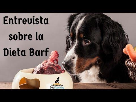 Entrevista a Mónica González Tovar sobre la Dieta Barf para perros (1ª parte)