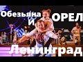 Группа Ленинград Обезьяна и орел Юбилейный концерт группы Ленинград 20 лет mp3