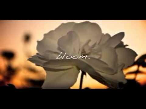 Bloom   Moriah Peters   Karaoke