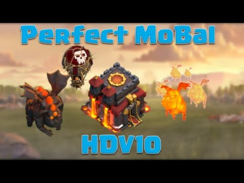HDV10 Perfect : Molosse Ballon