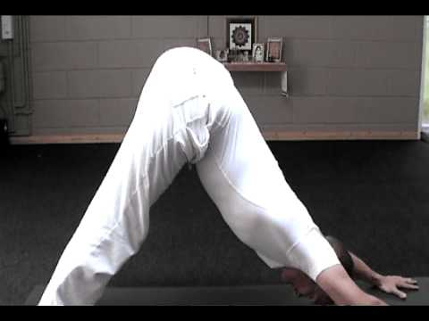 integral yoga sun salutation for beginners  youtube