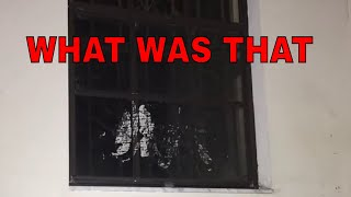 RAW STILL FOOTAGE AT THE BLAIR WITCH HOUSE