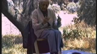 J. Krishnamurti - Ojai 1980 - Public Q&A 3