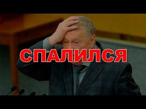 Жириновского обвинили в