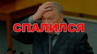 Жириновского обвинили в домогательствах