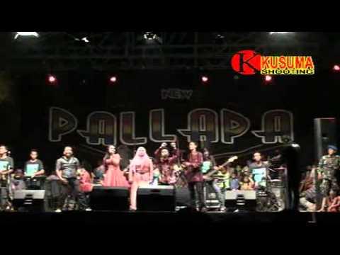 Tutupe Wirang - Ani Arlita - OM.New Pallapa Live KedongKendo 2015