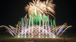 Pyronale 2014: Heron fireworks - Netherlands - Niederlande
