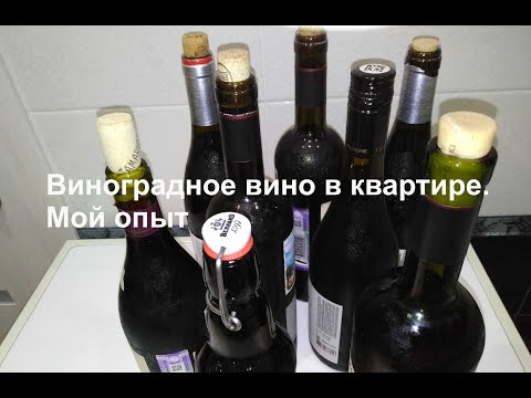 Как я делал виноградное вино. От грозди до бутылки