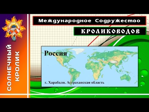 Кролики Астраханская обл. г. Харабали