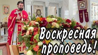 Церковь - это единый организм! Протоиерей  Андрей Ткачёв.