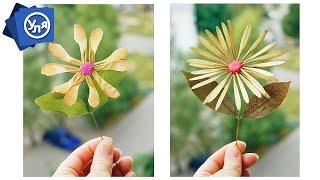 Поделки осенние своими руками // Цветы из семян