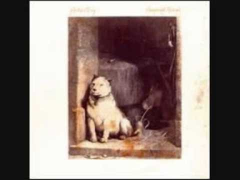 Pavlov's dog-song dance