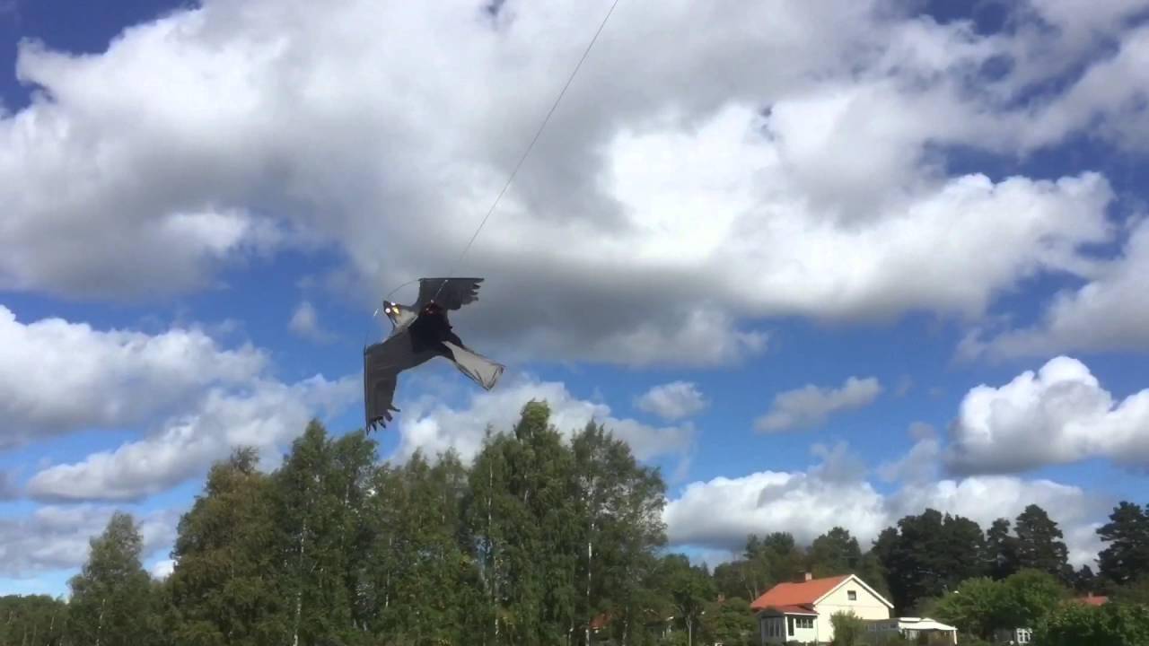 Icke gamla Flygande Fågelskrämma Drake Höken - YouTube FD-84