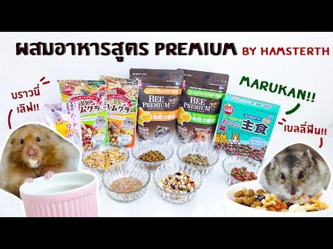 Marukan Premium มาผสมอาหารแฮมสเตอร์ สูตรพรีเมี่ยมกันเถอะ!! By Hamster Thailand