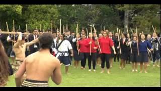 Kura Kaupapa Māori unveils draft Te Aho Matua curriculum