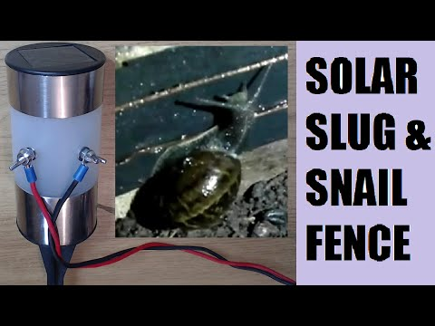 Solar led light electric slug & snail fence hack how to