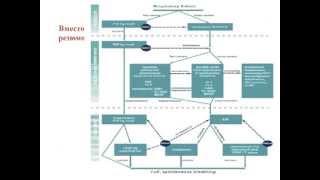 ИВЛ в неотложной неврологоии и нейрохирургии (2 МСН) Грицан А.И.
