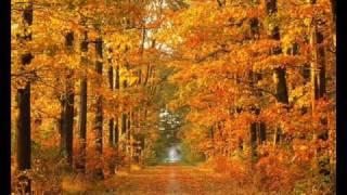 Autumn Rain / Rachel Reeves
