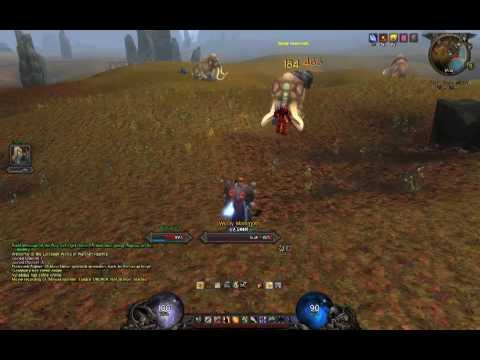 PvProtection Warrior - Life as a living joke