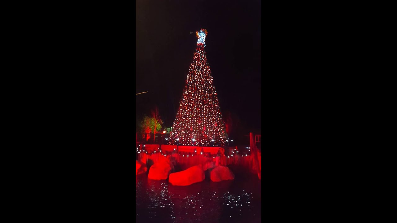 The Christmas Tree Light show at Dollywood - YouTube