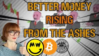 Economic Turmoil and the rise of Bitcoin and Privacy Coins