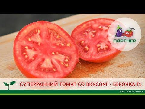 СУПЕРРАННИЙ ТОМАТ СО ВКУСОМ! - ВЕРОЧКА F1   выращивание   урожайный   агрофирма   мечталин   томатов   теплица   помидор   партнер   урожай   томаты