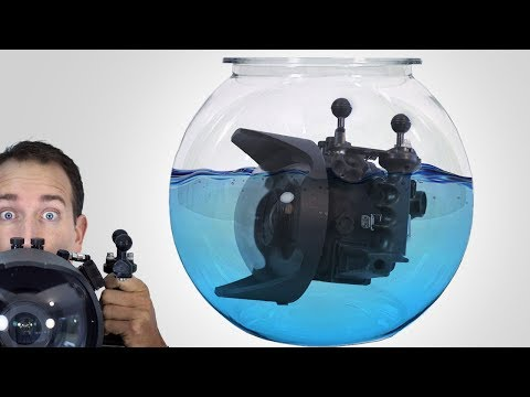 5 Underwater Imagery Tips For New Photographers