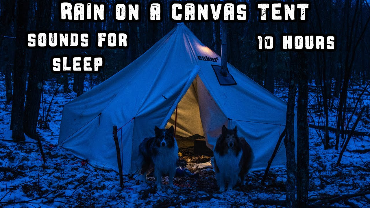 Rain On A Canvas Tent - Napping With The Dogs - Sounds For Sleep - 10 Hours