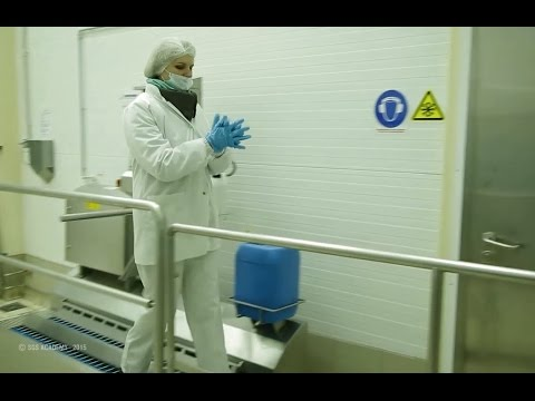 Управление пищевой безопасностью на производстве. Примеры ППУ