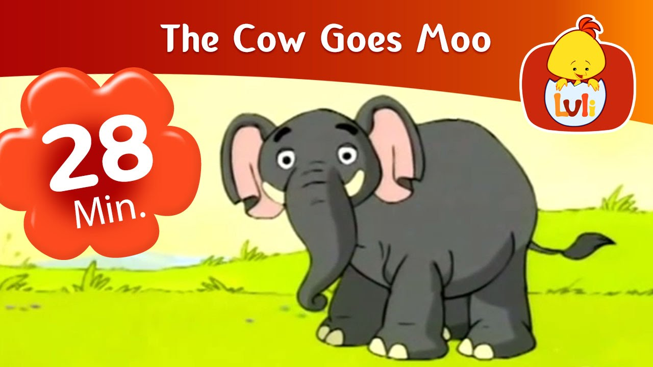 Custom Card Template www.moo.com : The Cow Goes Moo: Cartoon for Children - Luli TV - YouTube