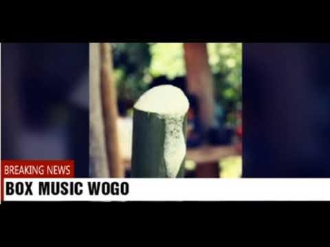 Lagu Party Flores Reggae terbaru Tua Bhara Bana Waka (BMW)