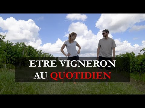 ÊTRE VIGNERON AU QUOTIDIEN // BEING A WINEMAKER, DAY-TO-DAY