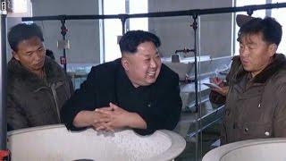 هل فقد زعيم كوريا الشمالية عقله أم يخشى مصير القذافي وصدام حسين؟