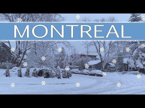 Montreal Snow -