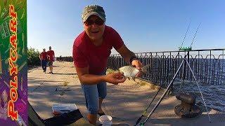 Feeder fishing\\CИНЕЦ ПОДЛЕЩИК НА ФИДЕР\\НА ДНЕПРЕ\\ЧЕРКАССЫ НАБЕРЕЖНАЯ