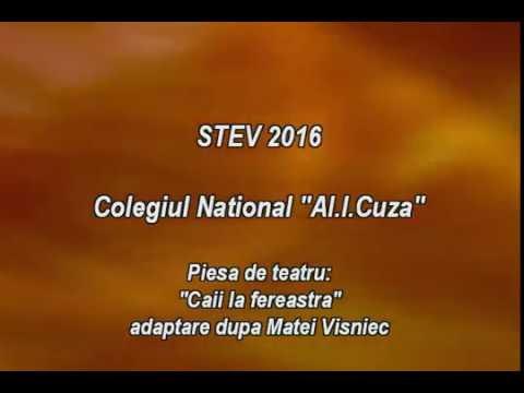 "Stagiunea Teatrală a Elevilor Vrânceni (STEV) 2016 – CN ""AL. I. CUZA"""