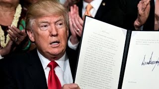 What has Trump accomplished in his first 100 days?