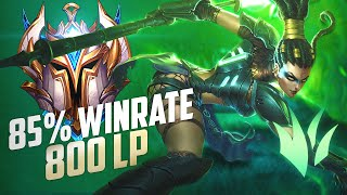 Why This Jungler Has 85% Win Rate On Nidalee In Challenger! | League of Legends Jungle Guide