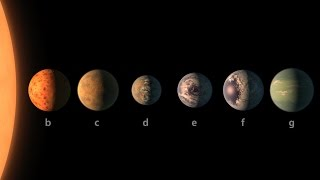NASA has found a planetary system with 7 Earth sized planets, all of which could have liquid water.