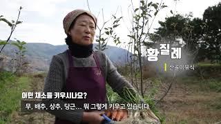 [에코맘 산골이유식] 산골텃밭 농사소개